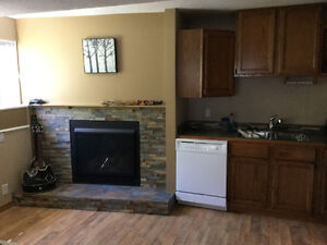 1 Bedroom basement suite Sylvan Lake Available July 1st