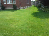 Spring Cleanup, Lawn mowing and rolling Call 519-788-3761
