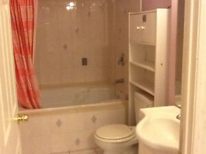 Nicely One Bed Room Basement Apartment For Rent