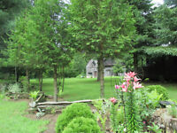 Campground for Sale : 1.5 Km from Lake Erie / Port Burwell Beach