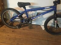 Eastern bmx trade for scooter or mountain bike