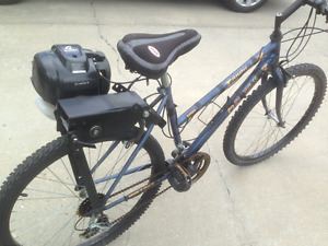 Bike with a gas motor