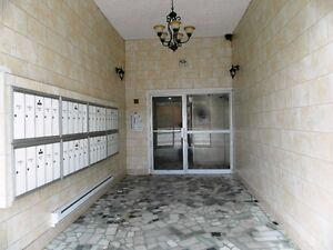 Carterville  2.5 apartment luxury renovated Rent 525$ Free wifi