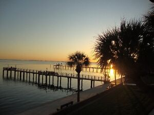 Condo on Beautiful Tampa Bay, St.Petersburg, Florida