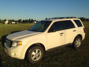 2011 Ford Escape XLT for sale.