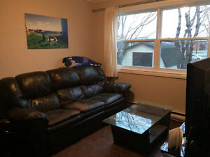 Beautiful fully fenced walkout basement apartment St. John's Newfoundland image 7