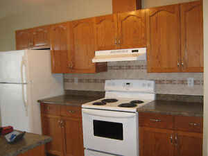 Vegreville 4-plex for rent Strathcona County Edmonton Area image 1