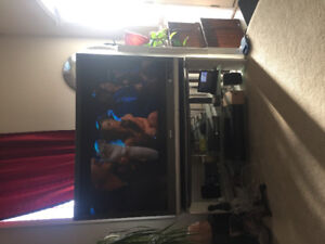"Sell Sony Wega 50"" tv and stand"