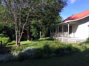 Nice Cottage for rent - North of Tremblant, SEPT & OCT AVAILABLE