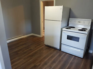 1 bedroom basement apartment located in Grand Falls Windsor