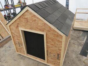 48x48x48 Dog Houses Available