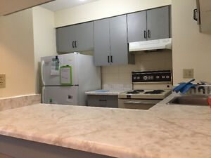 3-Bedroom clean and Spacious in university area for great price Kitchener / Waterloo Kitchener Area image 4
