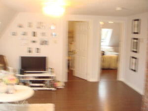 large  2 bedroom on dal campus available May 1