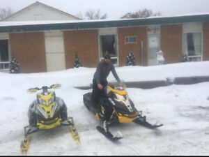 2 skidoos for sale with trailer