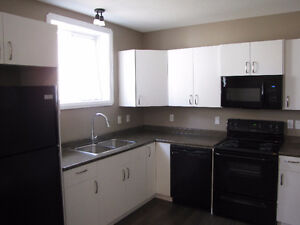 Perfect for Students!!! New and Bright Basement Suite