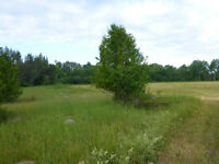 100 acre Manitoulin Island property