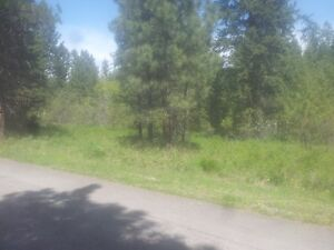 RESIDENTIAL LAND FOR SALE BIGFORK, MONTANA