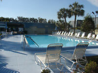 Fully equipped 1 bedroom condo in Clearwater, Florida