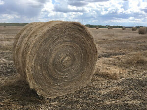Flax Bales - Round - Uncombined