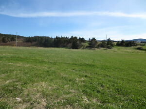 Large lot can be subdivided - Scenic Rocky Harbour St. John's Newfoundland image 2