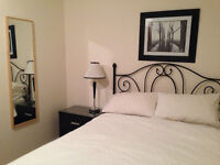 Beautiful Furnished Room off of Main Street/ Riley Park
