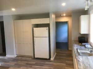 MODERN/ FULLY RENOVATED NEAR SLC & QUEEN'S W.CAMPUS