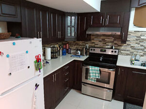 2 Bedroom Basement Apt in Brampton