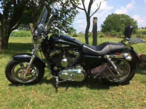 For Sale 2014 HD Sportster