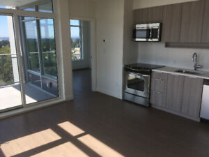 Brand New Condo – 2 bedroom, 2 bathroom for only $1850 in Evolve