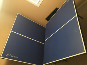 Eastpoint Ping Pong Table