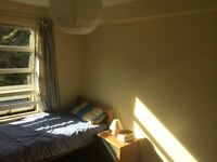 Bright double room to let in central edinburgh flat