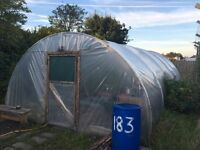 Large Polytunnel