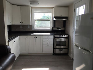 Perfect Newly Renovated Apartment in Claremont