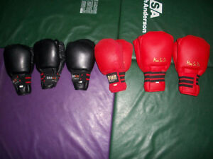 MMA Gloves Drako & MooSaDo