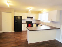 Brand New Kitchen and Bathrooms in NW Edmonton!