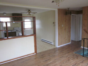 {AMHERST 3-bdrm 2-level townhouse-style unit, quiet 3-unit bldg}