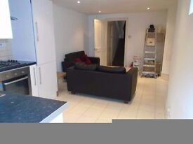 NEWLY REFURBISHED LARGE 2 DOUBLE BED LARGE GARDEN FLAT - MUST VIEW