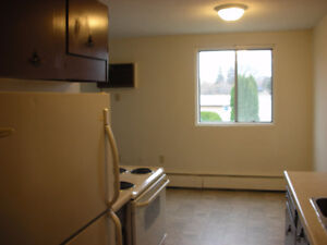QUIET Top Flr 2 Bedroom: $925 + power, near 8th Street Moose Jaw Regina Area image 6