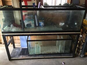 Fish tank 125 gallon + 55 gallon sump with stand!