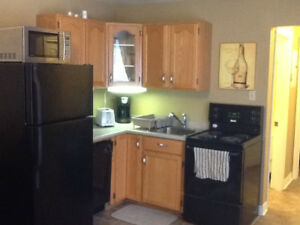 all inclusive furnished one bedroom bachelor suite