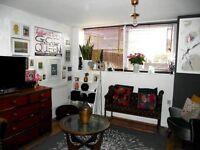 1 bedroom flat, Bermondsey, SE1 - excellent condition, great location