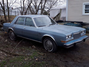 Plymouth Caravelle 1982  ( projet )