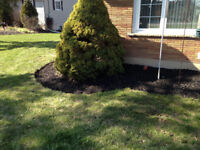 Spring Yard Clean-up ! Great Rates