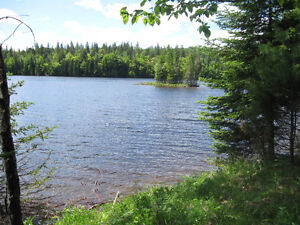 Bargain waterfront land for sale