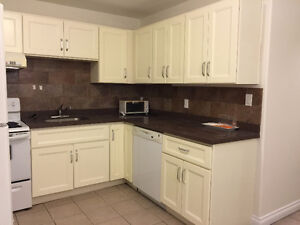 Newly renovated 2br suite in Metrotown Area