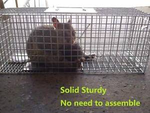 Solid Sturdy Frame Possum Trap/Cage, Rabbit, Cat Humane Pest Trap Sydenham Marrickville Area Preview