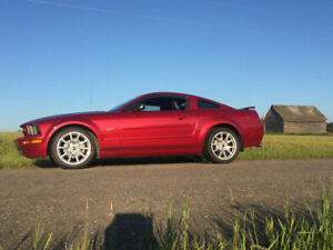 2005 Mustang GT - Only 32,000 km - REDUCED!!
