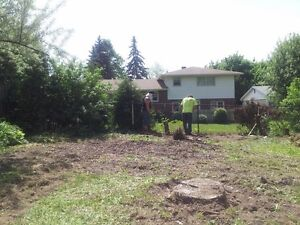 lawn  aeration London Ontario image 8