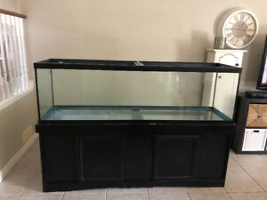 135 gallon fish tank with canopy, wet/dry filter, accessories