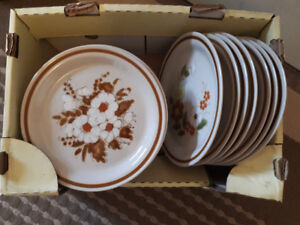 Dinner plates / dishes (24)